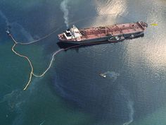 Exxon Valdez Oil Spill