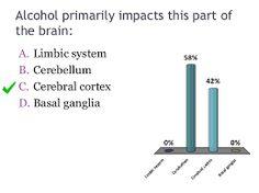 Afbeeldingsresultaat voor cerebellum alcohol