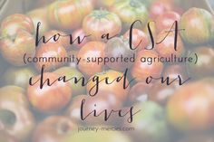 How community supported agriculture changed our lives - and tips on why you should do it and how to get started Best Of Journey, Community Supported Agriculture, I Passed, Get Excited, Daffodils, Our Life, How To Get, Change, Tips