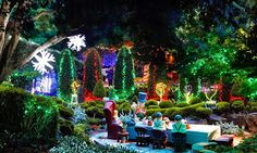 Discover The Wine Tasting Capital at Hunter Valley! Read more @ http://owl.li/FrZ1i A Tour worth doing this #Christmas! Photo: 1.5 MILLION CHRISTMAS LIGHTS @ Hunter Valley Gardens, New South Wales, Australia