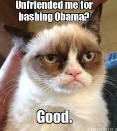 UNFRIENDED--Disclaimer: Views expressed by Grumpy Cat are not intended to make any kind of a political statement---HE'S A CAT PEOPLE!!!