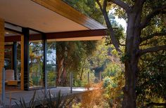 Sycamore-House-by-Aaron-Neubert-Architects--(3)