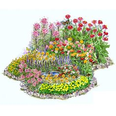 Long-blooming Garden Plans