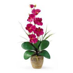 Beauty Single Stem Phalaenopsis Silk Orchid Arrangement