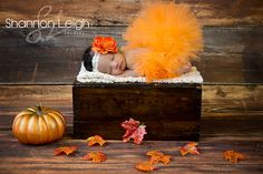 Sweet Autumn Tutu Set Fall Tutu Orange Tutu Custom Made With Matching Vintage…
