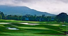 Robert Trent Jones Golf Trail • Hampton Cove. We played the Highlands Course with the Steigerwalds, September 2012!