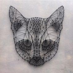 Fox •