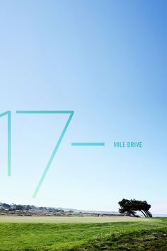 pw.travelogue » ch. 25 17-mile drive / photography by peggy wong