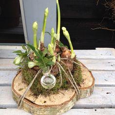 Bolletjes op een houtschijf gebonden met glazen bolflesjes met bloemetjes 13,50 te verkrijgen bij CreAnoeska.nl