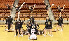 Go bears!