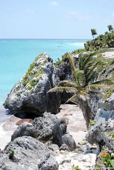 Vacaciones Riviera Maya  www.belairxpuha.com
