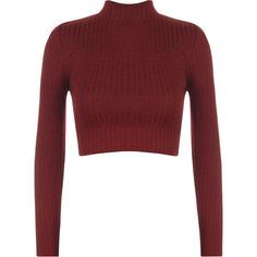 Darcie Turtle Neck Ribbed Crop Top ($17) ❤ liked on Polyvore featuring tops, sweaters, wine, cropped sweater, ribbed sweater, turtleneck crop top, ribbed turtleneck sweater and ribbed turtleneck
