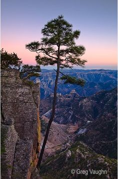 My friend from Sweden and I spent a few days backpacking to the bottom of Copper Canyon in Mexico in 1999. Meeting the Tarahumara people in person was amazing, let alone the beauty of the canyon!