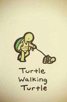 Turtle walking turtle @turtlewayne