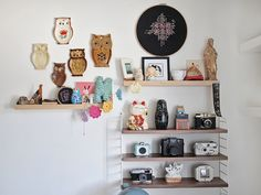 {owls, cats & cameras!} love this display (string shelves)!