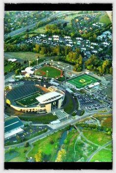 Oregon ducks stadium