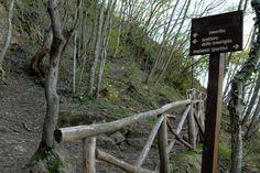 Sentiero della Fessa. #marcafermana #smerillo #fermo #marche