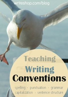 Teaching writing conventions--generally accepted standards for written English and grammar--will help kids' writing look and sound its best. Grammar Skills, Grammar And Punctuation, Teaching Grammar, Teaching Writing, Teaching Aids, High School Writing, Kids Writing, Writing Skills, Writing Ideas