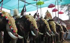 CHURCH #festival  at #Kerala #india    See More Details: http://www.welcomekeralaonline.com/events/01-02-nov-2017-perunnal-st-gregorious-orthodox-syrian-church-kunnamkulam-thrissur-dt