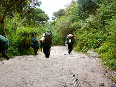 Inca Trail to Machu Picchu Peru- what to pack, what to expect, and how to obtain permits for the inca trail.