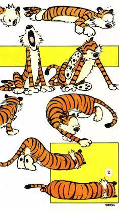 Bill Watterson - Calvin and Hobbes