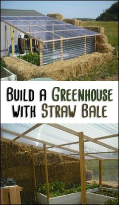 Building a straw bale greenhouse is just like any other construction project. It could either be a disaster or it could be the best greenhouse you will ever have. It all depends on how you build it!