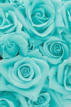 800+ Wallpaper Hp Biru Tosca HD Terbaik