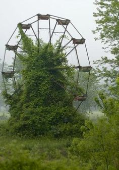 Abandoned Ferris Wheel... I don't know why, but this is at the same time both highly beautiful and highly creepy....