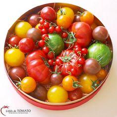 Celeb de TOMATO  / トマトの宝石箱