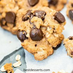 Chewy oatmeal laced with gooey chocolate chips! Eat fresh from the oven or store to enjoy later! Chocolate Morsels, Best Chocolate Desserts, Mini Chocolate Chips, Vegetarian Chocolate, Oatmeal Cookie Recipes, Oatmeal Chocolate Chip Cookies, Best Cookie Recipes, Fall Dessert Recipes, Fun Desserts