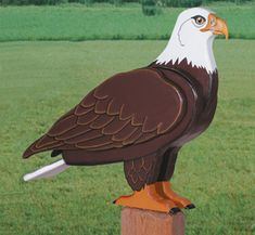 3D Life-Size Eagle Woodcraft Pattern Make this realistic looking yard Eagle. #diy #woodcraftpatterns