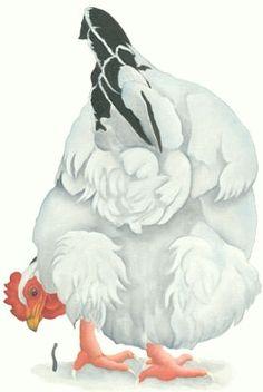 Lizzie Hall. light sussex chicken painting