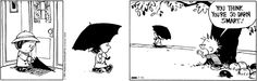 Calvin and Hobbes for July 15, 2015