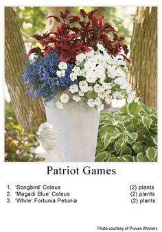 Container Garden   Garden Design   Rochester MN Garden Center