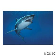Shark+Backdrop+Banner+-+OrientalTrading.com