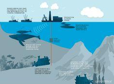 Greenpeace takes on deep sea mining | MINING.