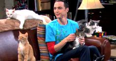'Big Bang Theory' Sued Over Soft Kitty Song -- The family of Warm Kitty poet writer Edith Newlin claims 'Big Bang Theory' producers need to pay up for use of the song. -- http://tvweb.com/news/big-bang-theory-sued-soft-kitty-song/