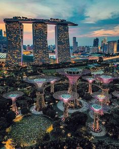 A beautiful light show at night in Singapore - Traveller Singapore Garden, Singapore Travel, Singapore Singapore, Skyline Gtr, Places To Travel, Travel Destinations, Places To Visit, Marina Bay Sands, Road Trip