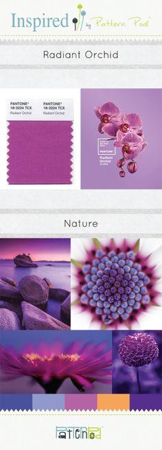 Pattern Pod Color Trend Letter December 2013 - Radiant Orchid #pantone #patternpod #color