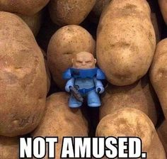 Strax is not amused.