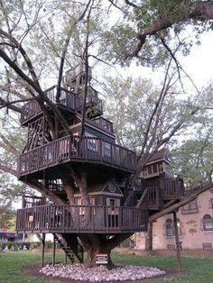 So many different levels the lowest level is low enough to feel safe and the highest one makes for a great lookout. I imagine star gazing on top of a tree house of this design would be outstanding.
