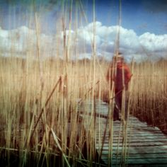 Expired pinhole | Flickr - Photo Sharing!