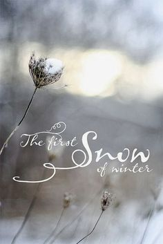 More Than Sayings: The first snow of winter