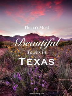 Texas, the second-largest state in America, is home to a vast majority of charming towns, exciting cities and beautiful landscapes. Find out which towns made the list on The Culture Trip!