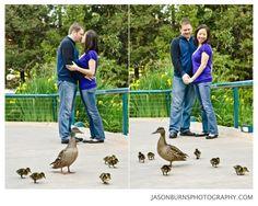 San Diego Zoo Engagement Session, Orange County Wedding Photographer, Jason Burns Photography