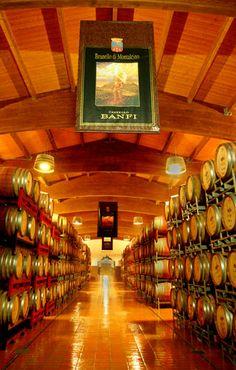 Banfi Winery and Cellars Tuscany, Italy. Breath taking, beautiful and tasteful