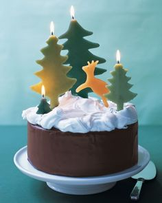 Chocolate Cake with Snowy Meringue