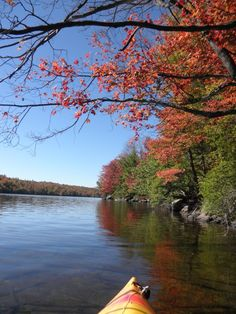 Another from today's fall kayak, Lake Ozonia. Kayaking, Scenery, River, Spaces, York, Fall, Outdoor, Autumn, Outdoors