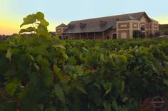 Delaney Vineyards in Grapevine