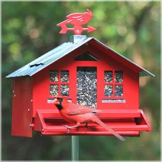 Perky Pet Squirrel Be Gone Ii Country Style Bird Ffeder Squirrel Proof Feeder